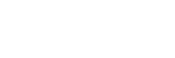 Revolution Plus Software per il Revenue Management